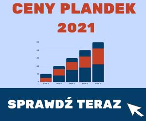 CENY PLANDEK 2021